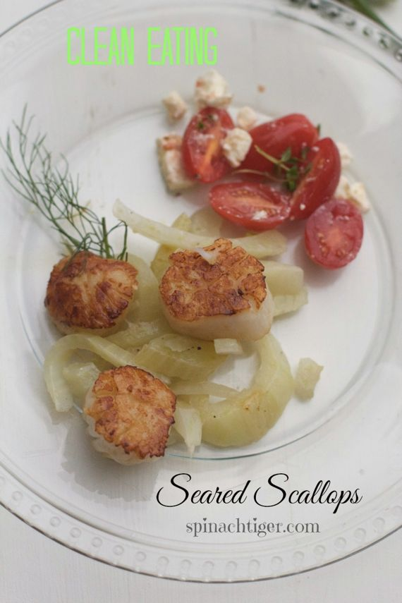 Seared Scallops with Braised Fennel by Angela Roberts