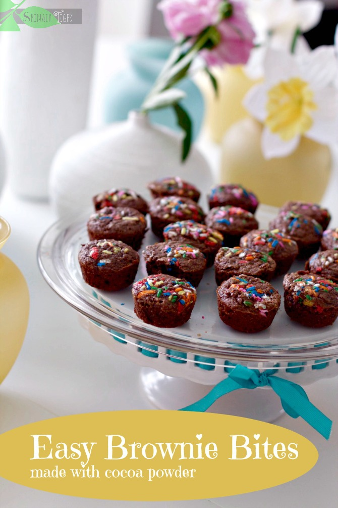 Easy Brownie Bites Made with Cocoa from Spinach Tiger