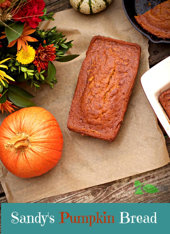 Sandy's Pumpkin Bread from Spinach TIger