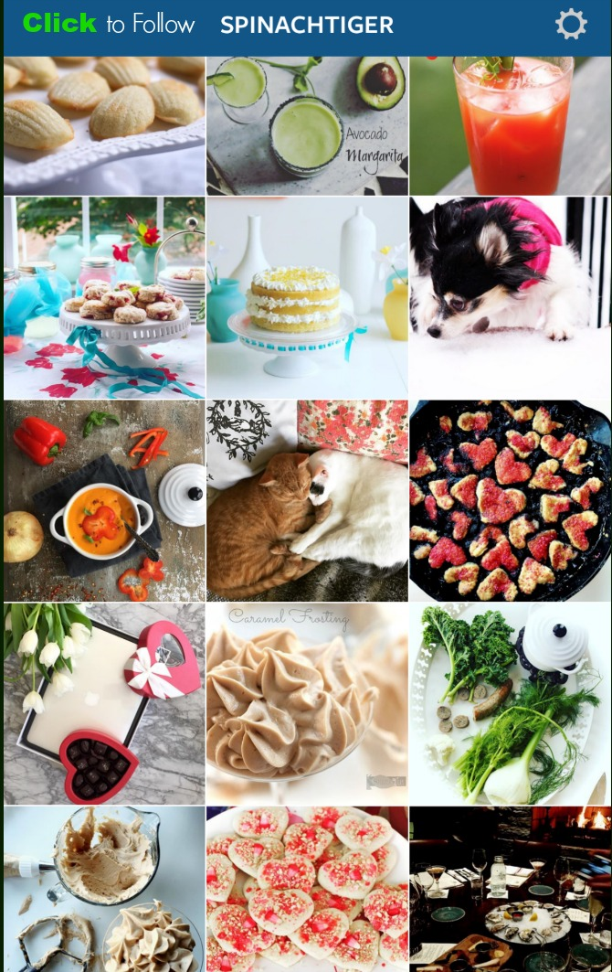 Instagram Feed for Spinach Tiger