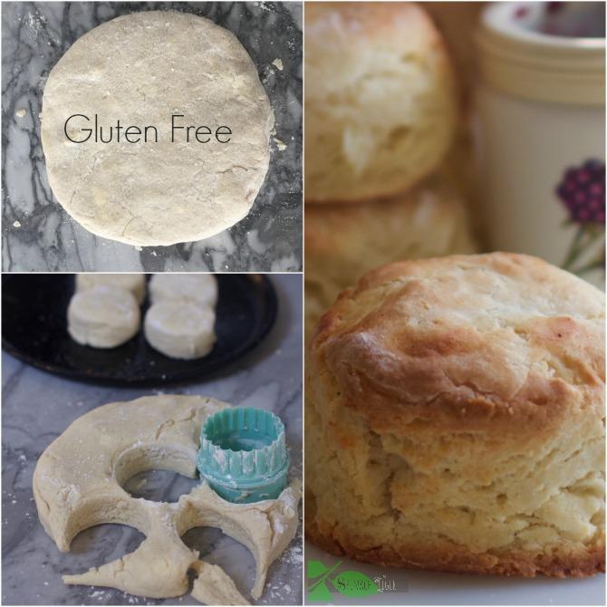 Gluten Free Biscuit by Angela Roberts