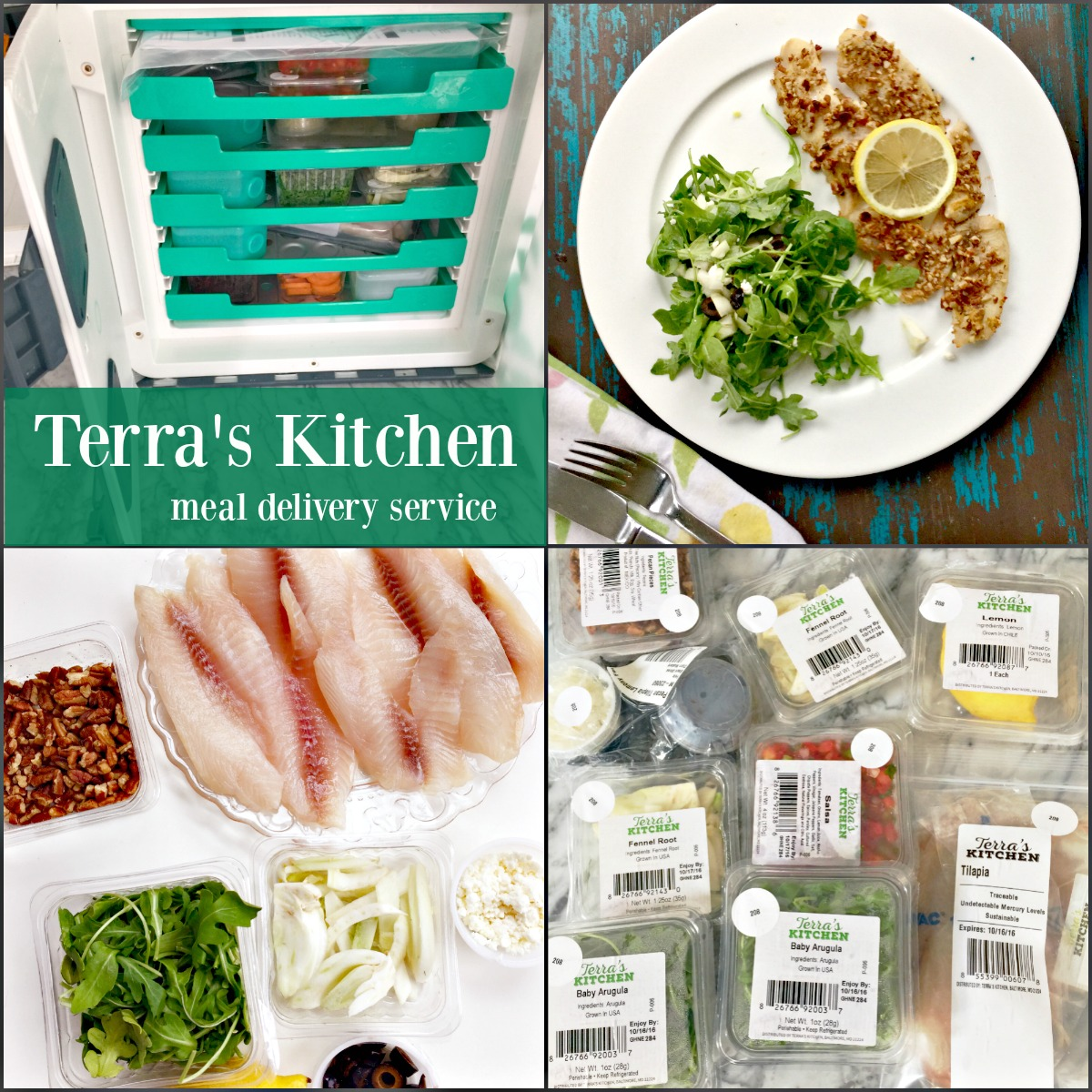 Terra's Kitchen Best Meal Delivery Service by Angela Roberts