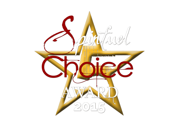 2015 Spinfuel Choice Award For Excellene
