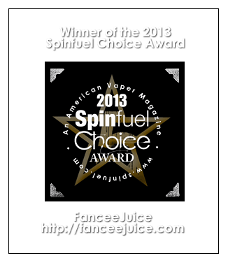 winner of the 2013 spinfuel choice awards