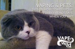 Vaping & Pets: Tips on How to Keep Your Furry Friends Safe When You Vape
