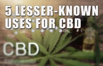 5 Lesser-Known Uses for CBD