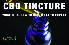 Using Urbul CBD Tincture for Anti-inflammatory and Pain