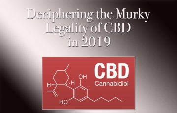 Deciphering the Murky Legality of CBD in 2019