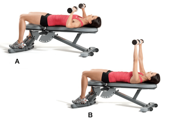 Dumbbell Chest Press Range Motion