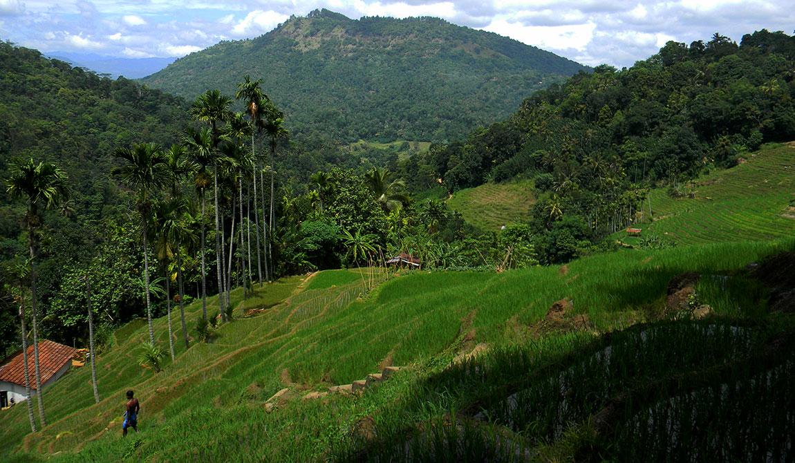 Best Travel Destinations In Sri Lanka Sri Lanka Travel