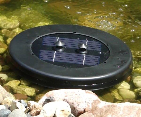 Floating Pond Plants Oxygenators