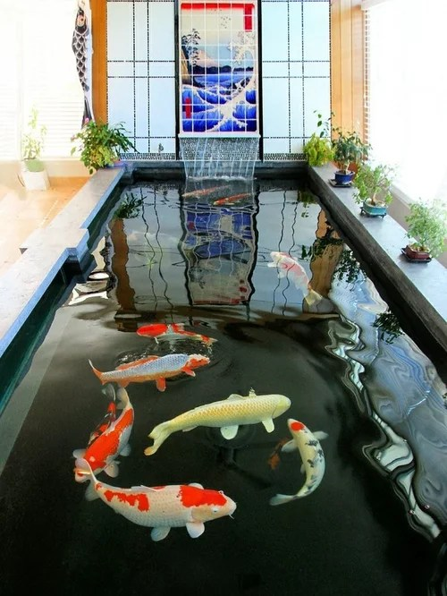 Outdoor Fish Ponds Designs