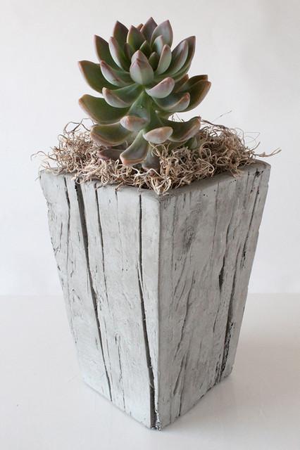 Modern Indoor Planters