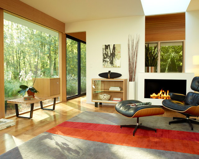 Herman Miller Eames Lounge Chair Living Room