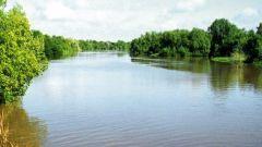 چگونه می توان تعصب رودخانه را پیدا کرد
