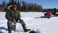 Как ловить подлещика зимой