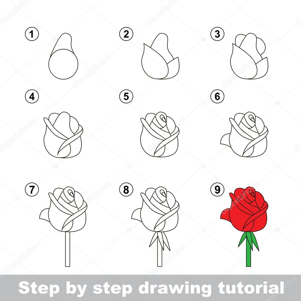 how to draw a rose - HD 1200×1283