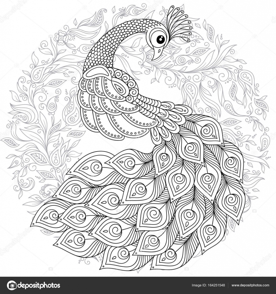 Peacock In Zentangle Style Adult Antistress Coloring Page