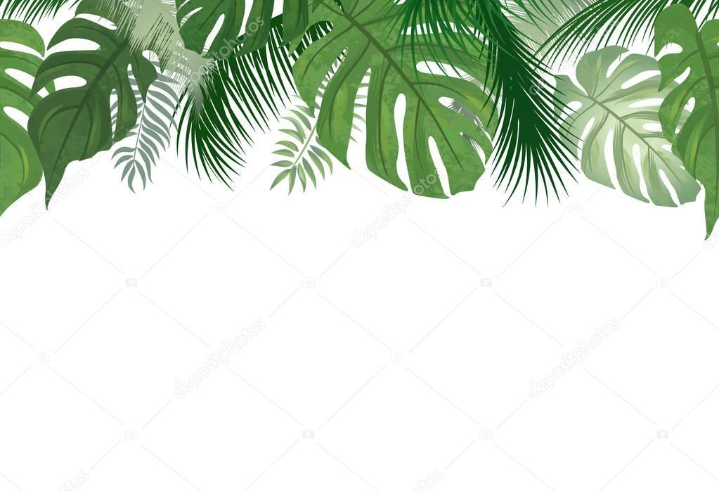 Watercolor Clip Art Succulent Border