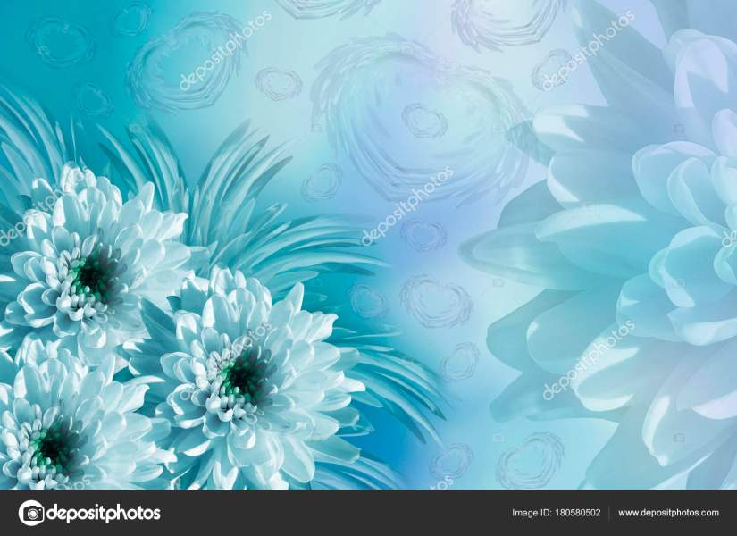 turquoise flowers background   Thevillas co turquoise flowers background