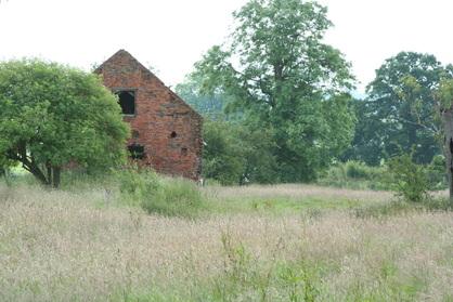 Habitat - Staffordshire Barn Owl Action Group