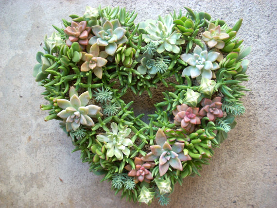 Wedding Flowers  How to Feature Succulents in your Decorations