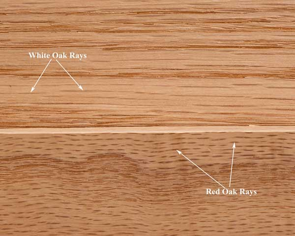 And Red White Oak Between Difference Oak