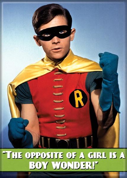 Batman 1960's TV Series Robin as the Boy Wonder! Photo ...