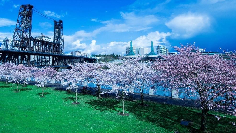 Chinese Garden Portland Oregon