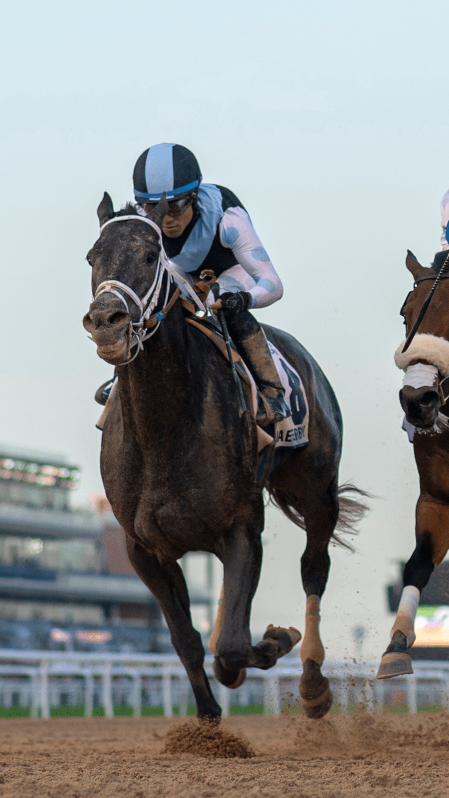 2019 Kentucky Derby Cheat Sheet America S Best Racing