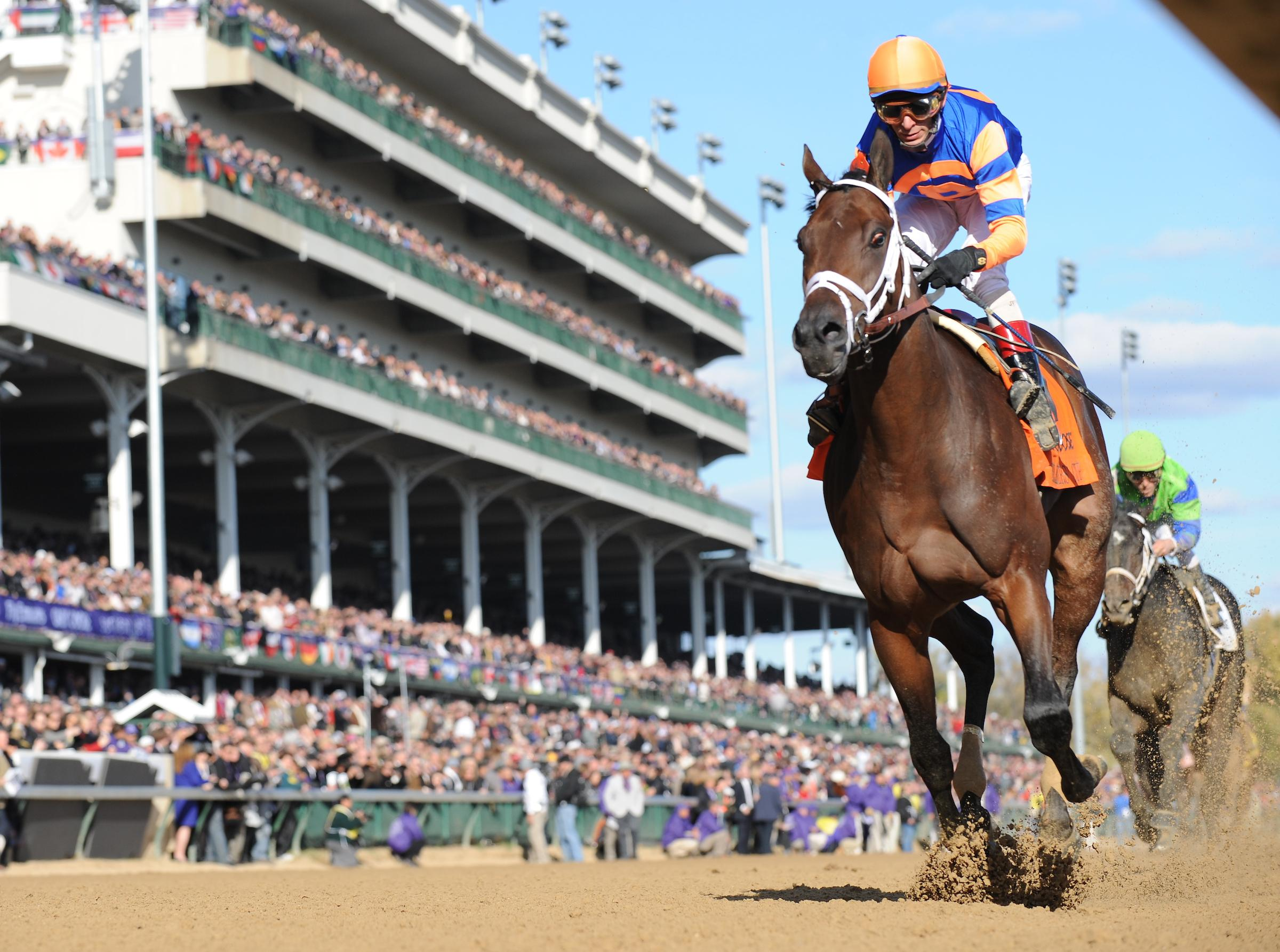 Breeders Cup Under The Microscope How Formidable Are The