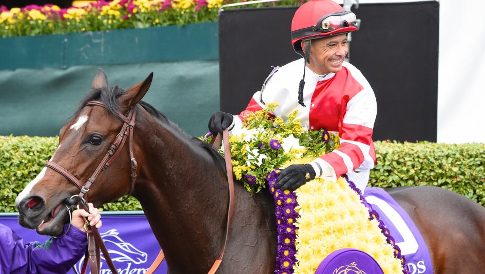 Mike Smith S Breeders Cup Diary Key To Continued Success