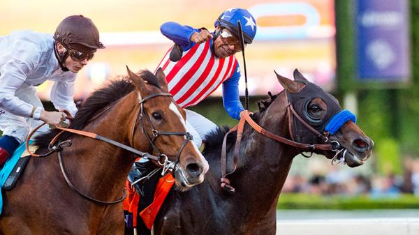 Bayern Highest Rated U S Horse In World S Best Racehorse