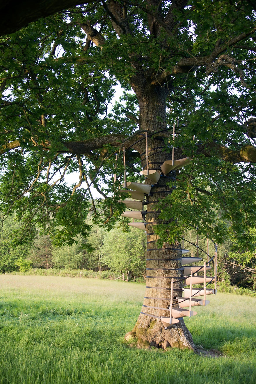 You Can Strap This Spiral Staircase Onto Any Tree Without Tools   Spiral Staircase Around Tree Trunk   Stair Case   Nelson Treehouse   Staircase Design   Robert Mcintyre   Canopystair