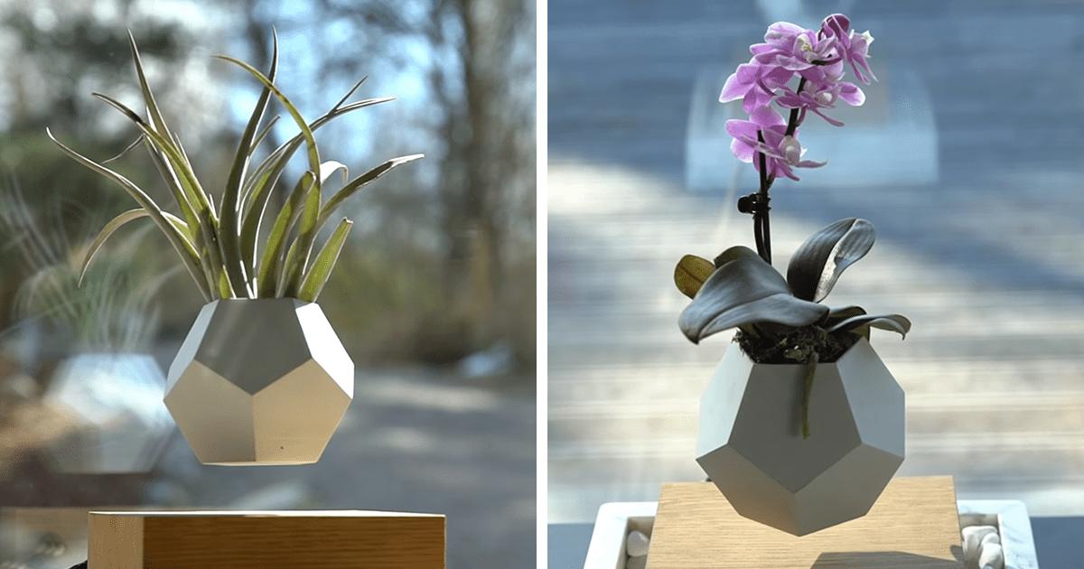 Levitating Pot Plant