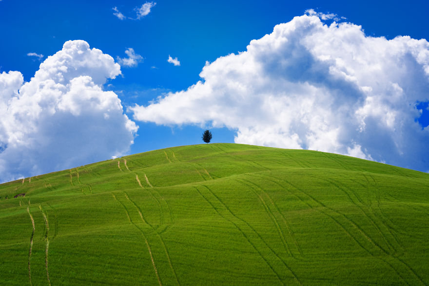 I Photographed Tuscany And It Looks Like The Classic Windows XP     Shot randomly in Tuscany  showing great similarities with the classic  Windows XP Wallpaper