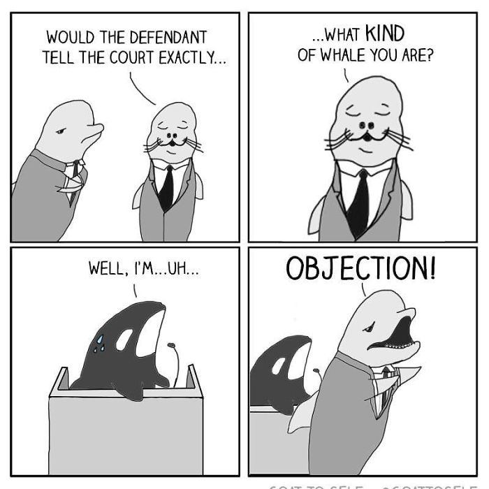 Image of: Legal Funnylawyerjokes Bored Panda 121 Lawyer Jokes That Prove That Not All Of Them Are That Serious