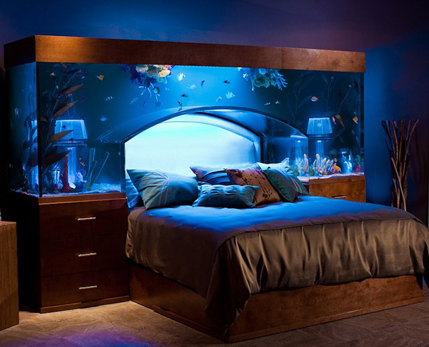 33 Amazing Ideas That Will Make Your House Awesome   Bored Panda 1  Aquarium Bed