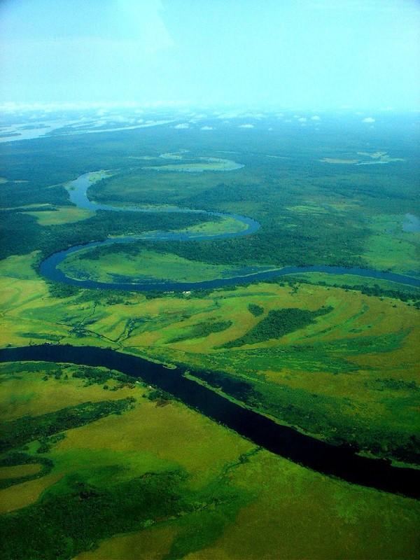 Equatorial Forest Photo De Congo Around The World