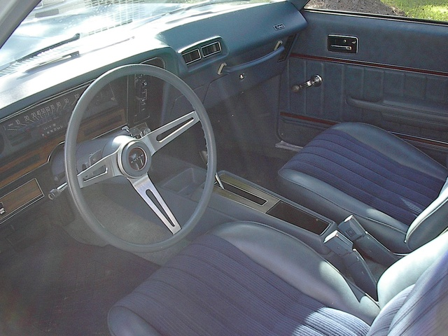 1979 Interior Buick Regal