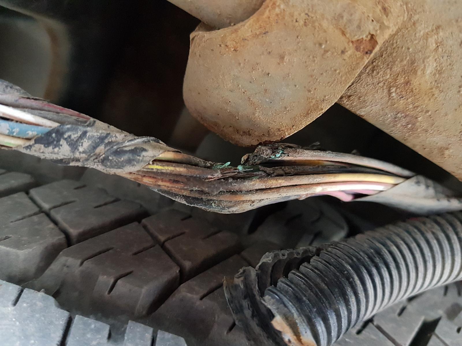 2004 Dodge Durango Headlight Wiring Harness