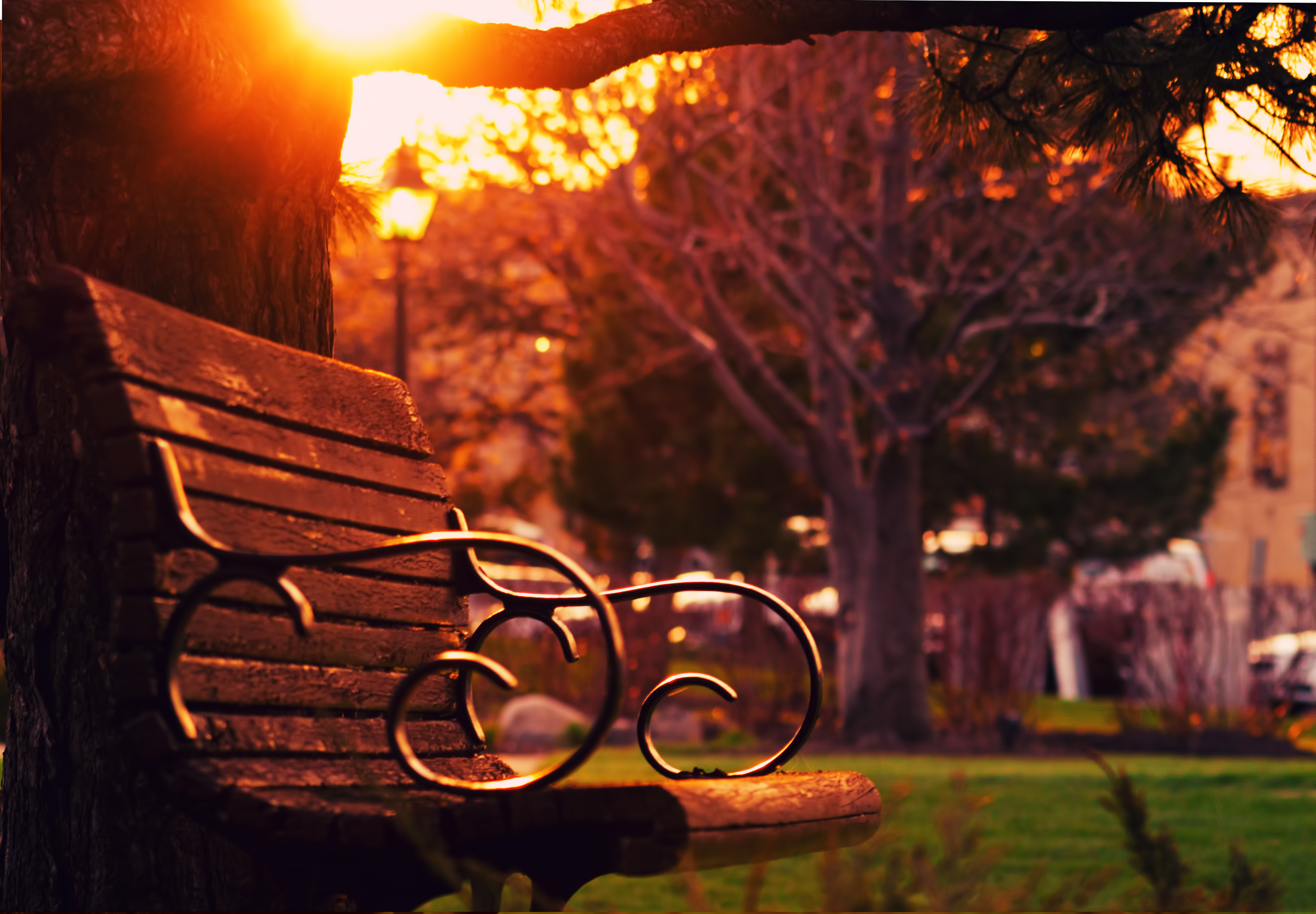 Brown Wooden Bench On Sunset 183 Free Stock Photo