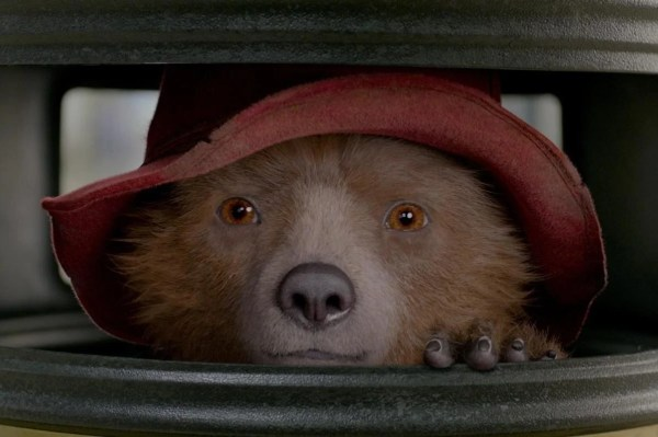 paddington bear film # 65