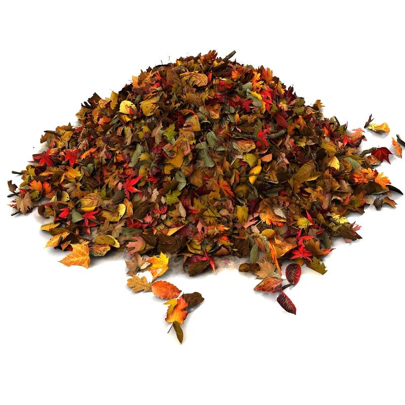 pile of leaves - 800×800