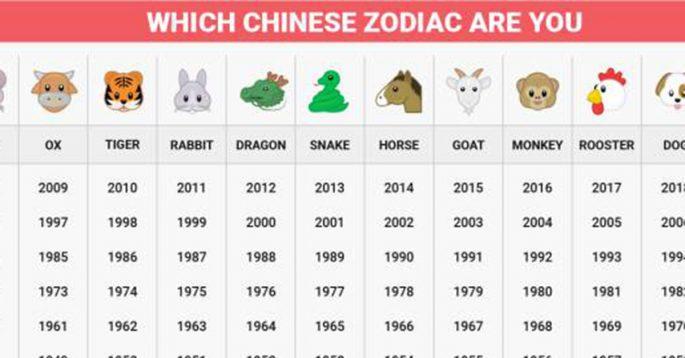 Chinese Zodiac Year Rat