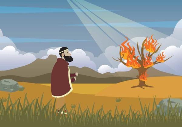 burning bush # 67
