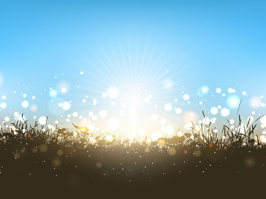 Sunny Landscape Download Free Vectors Clipart Graphics