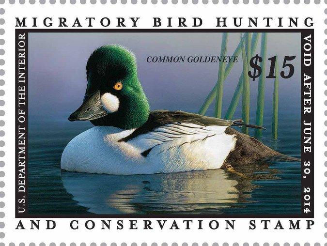 2014 Federal Duck Print