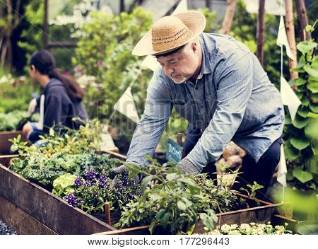 Group of people gardening backyard together Stock Photo ...