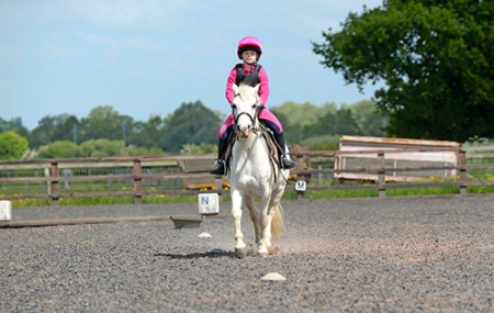 Fun games to try with your pony Your Horse Magazine Fun games to try with your pony